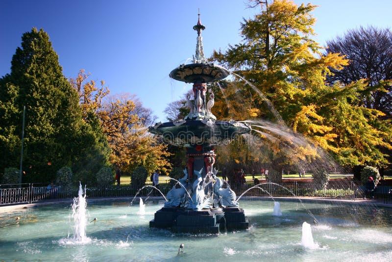 有五颜六色的树的异想天开的孔雀喷泉在秋天在克赖斯特切奇植物园里,新西兰 免版税图库摄影