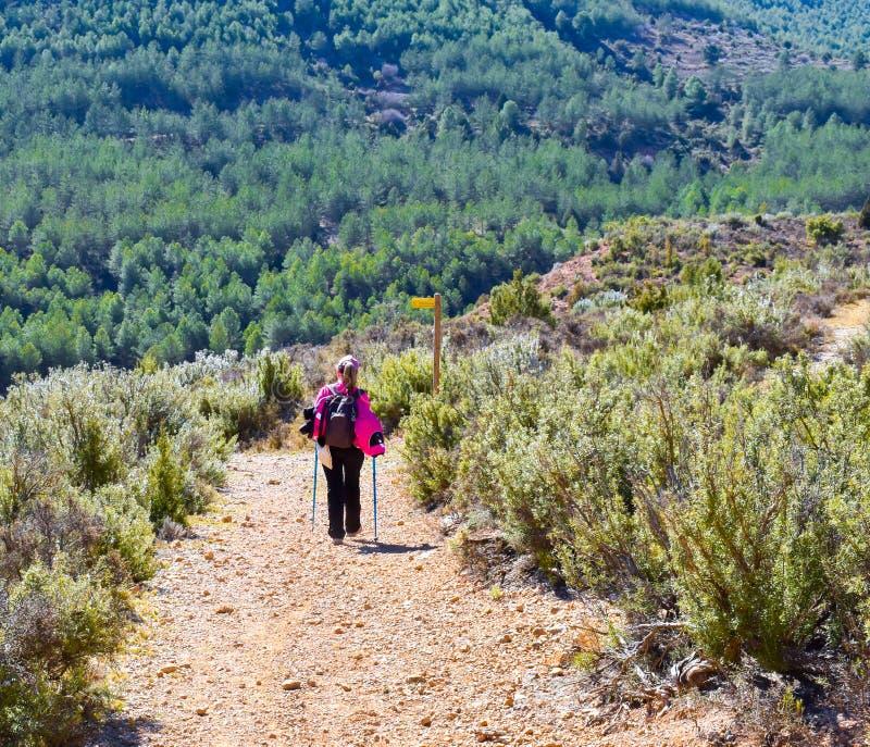 有五颜六色的背包、盖帽和杆的白肤金发的妇女迁徙在沙子和石头道路步行沿着向下横跨绿色的一座山的 免版税库存图片