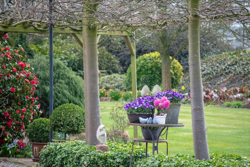 有五颜六色的花的农村乡村模式的春天庭院, cutted 库存图片