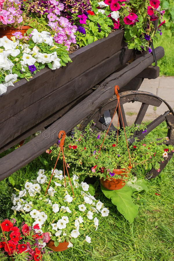 有五颜六色的花的木推车 免版税库存图片