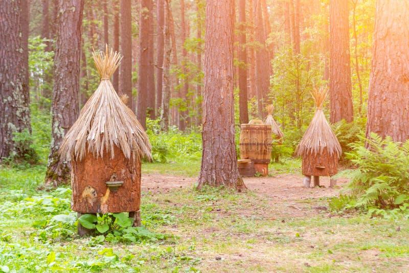 有人为蜂房的一间古老蜂房由秸杆和树b制成 免版税库存照片