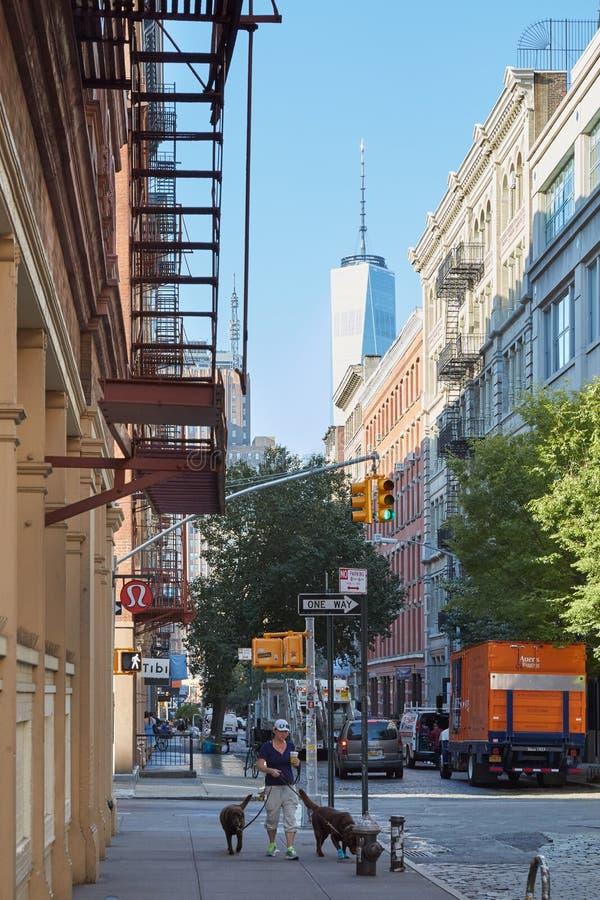 有人的伦敦苏豪区街道有狗和世界贸易中心一号大楼的在纽约 免版税库存图片
