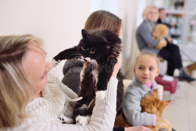 有他们的宠物的人们等待一个身体检查在兽医诊所 动物健康 免版税库存图片