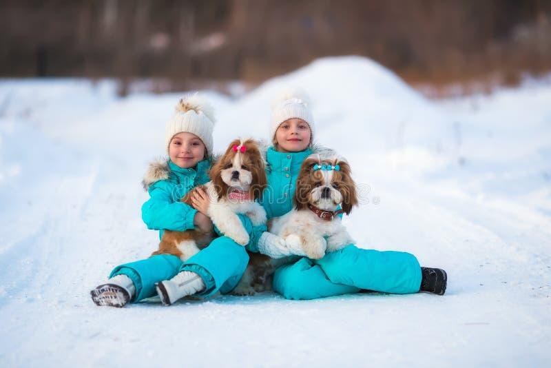 有他们的宠物的女朋友在步行去 免版税库存照片