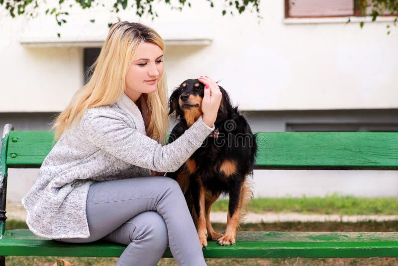 有他的坐和摆在照相机前面的小混杂的品种狗的美女在长木凳在城市公园 免版税库存图片