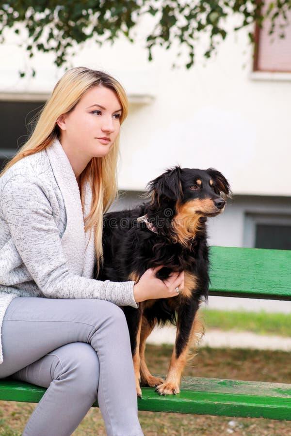 有他的坐和摆在照相机前面的小混杂的品种狗的美女在长木凳在城市公园 库存照片