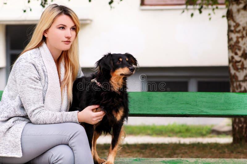有他的坐和摆在照相机前面的小混杂的品种狗的美女在长木凳在城市公园 免版税图库摄影