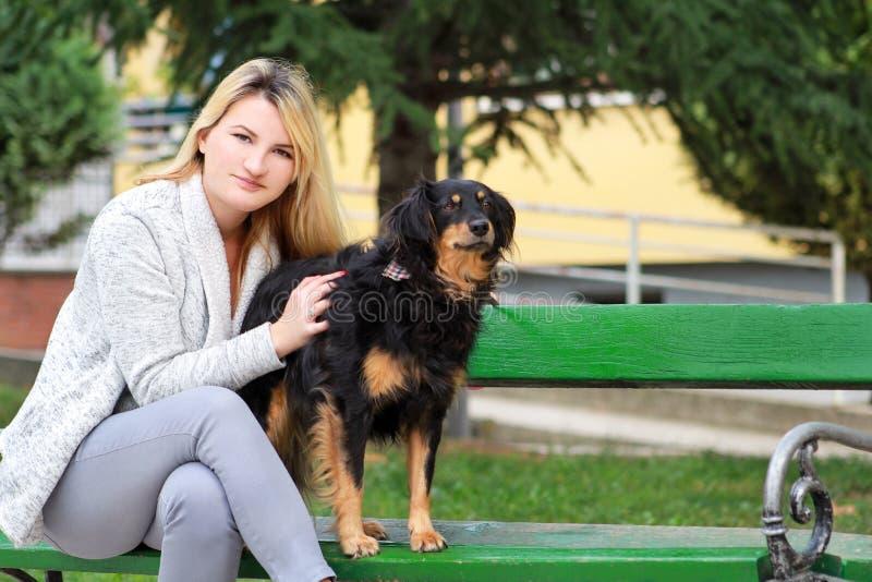 有他的坐和摆在照相机前面的小混杂的品种狗的美女在长木凳在城市公园 库存图片