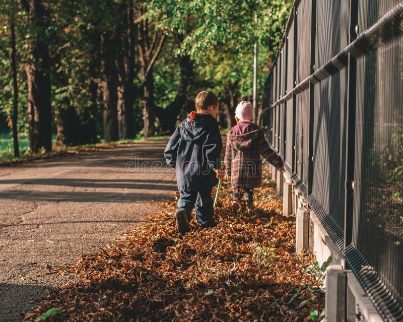 有他的姐妹的小男孩在秋天公园 库存照片