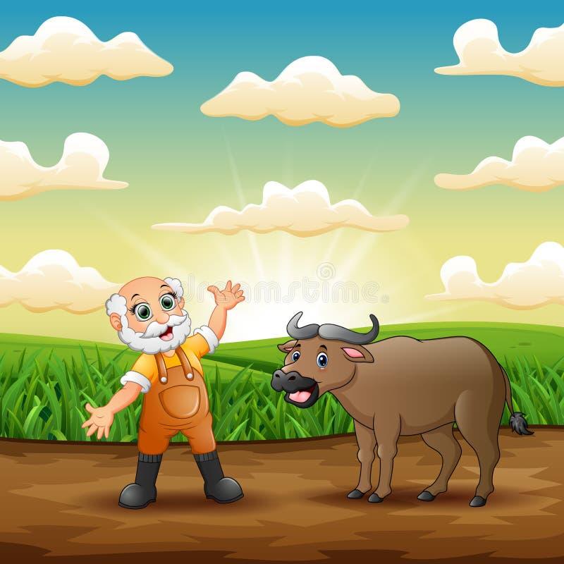 有他的水牛的老农夫在草地 皇族释放例证