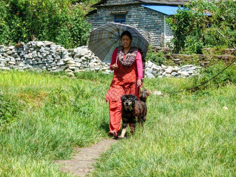 有伞和狗的尼泊尔女孩在Tatopani,尼泊尔 免版税图库摄影