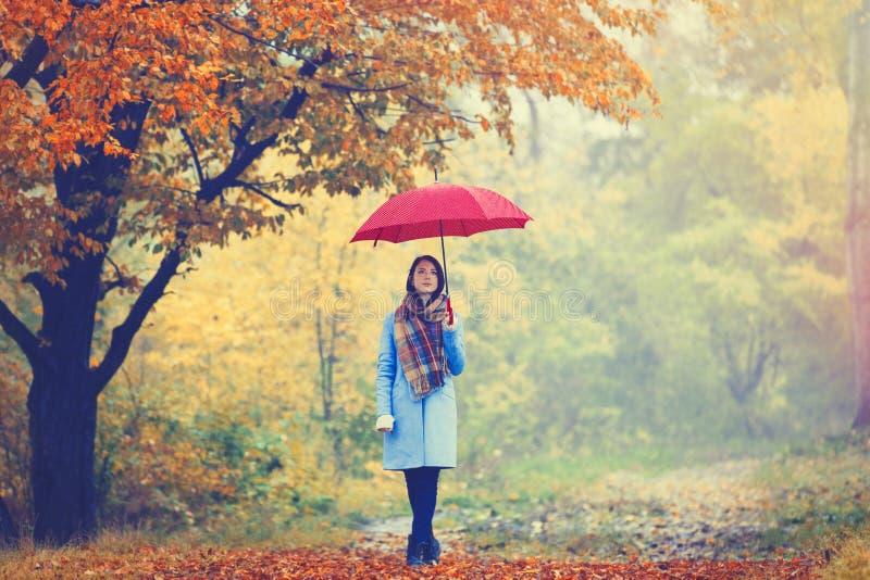 有伞的深色的女孩 图库摄影