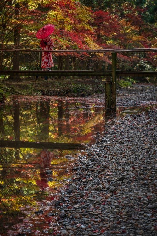 有伞的艺妓在一个小木桥在森林里 库存图片