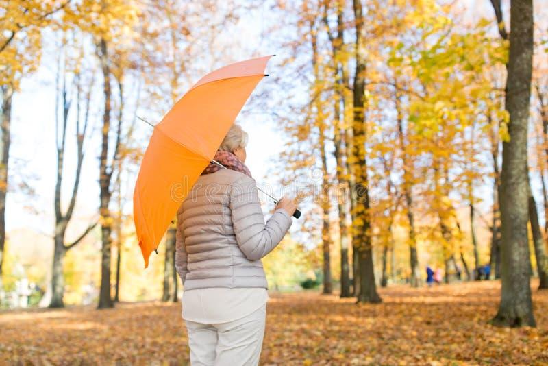 有伞的资深妇女在秋天公园 库存照片