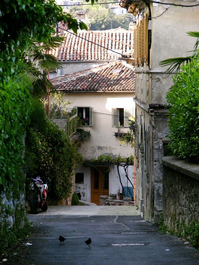 有传统房子的狭窄的街道在Volosko村庄在克罗地亚 库存照片