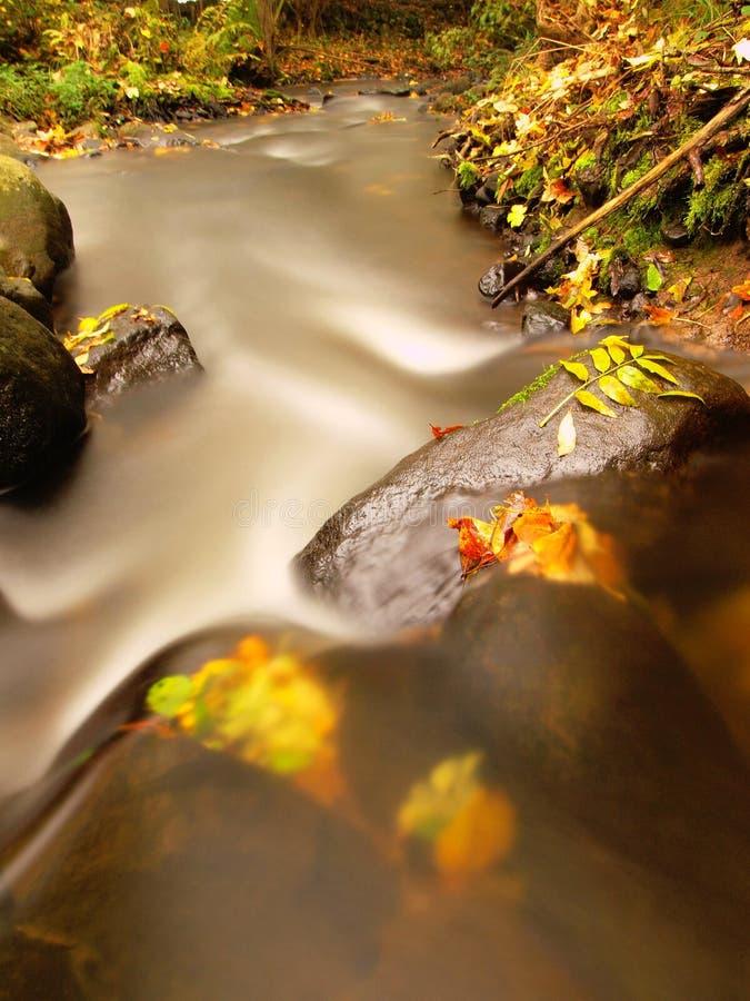 有低级的山河水,与第一片五颜六色的叶子的石渣 生苔岩石和冰砾在河岸 免版税图库摄影