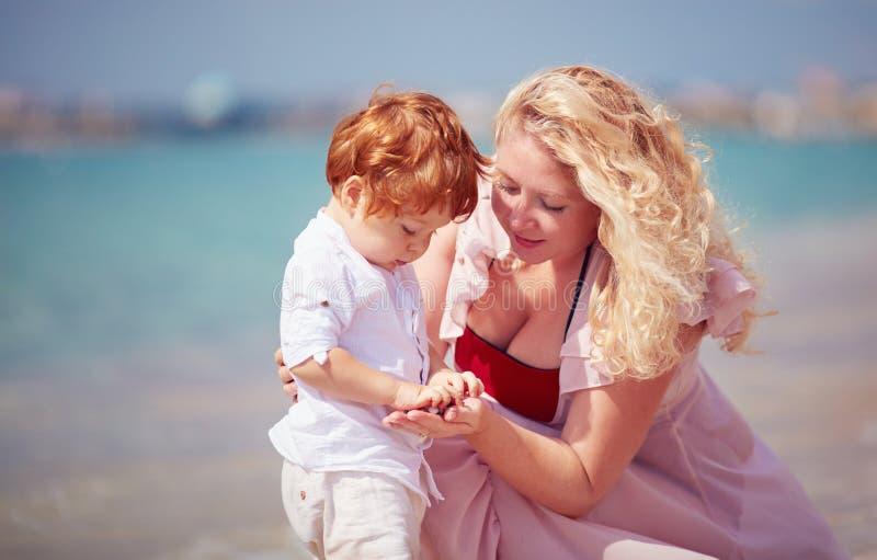 有使用与在海滩,暑假的小卵石石头的小儿子的愉快的母亲 免版税库存照片