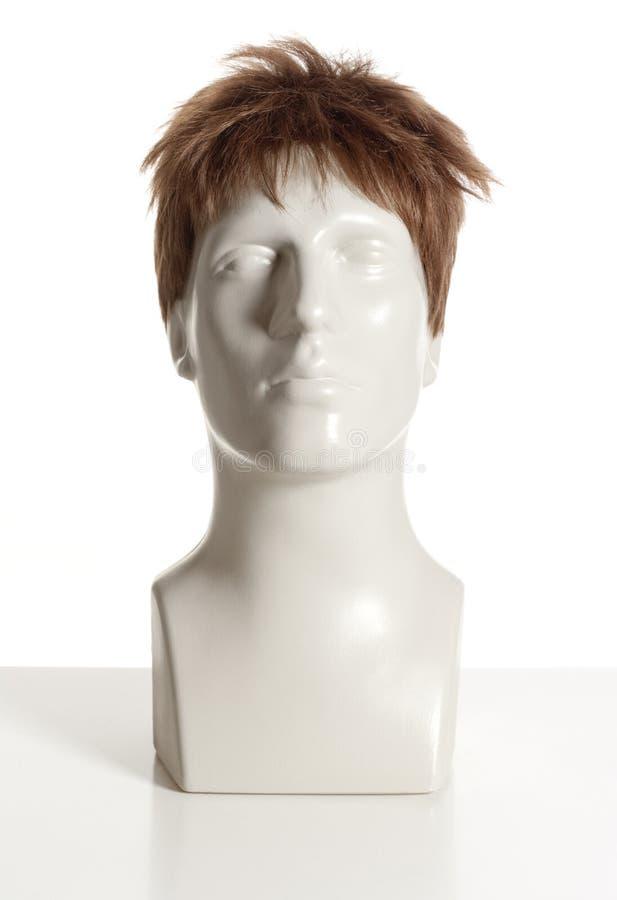 有假发的时装模特男性头 库存图片