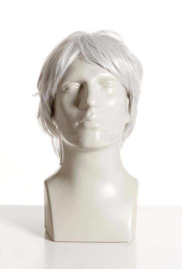 有假发的时装模特男性头 库存照片