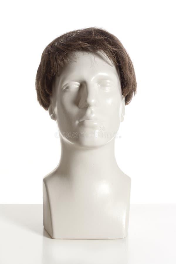 有假发的时装模特男性头 图库摄影