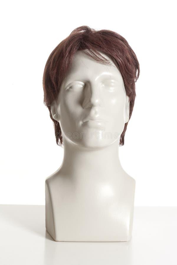 有假发的时装模特男性头 免版税图库摄影