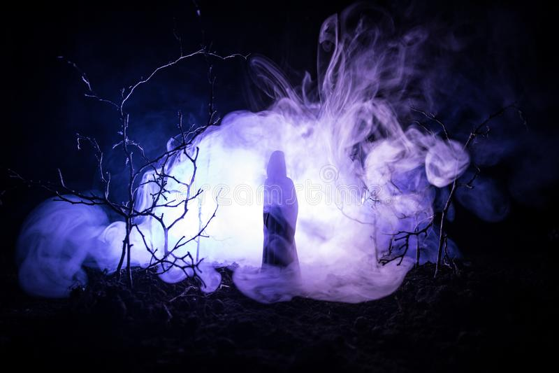 有光的单独女孩在森林里在晚上或者雾时间的蓝色被定调子的夜森林 选择聚焦 库存图片