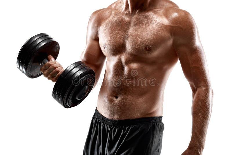 有光秃的胸口举的哑铃的英俊的肌肉人,演播室在白色背景射击了 免版税库存图片
