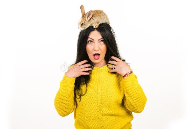 有兔宝宝的惊奇的妇女在她的头发 免版税库存图片