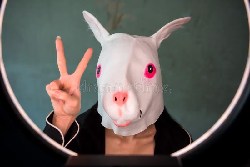 有党小兔面具的女孩 库存照片