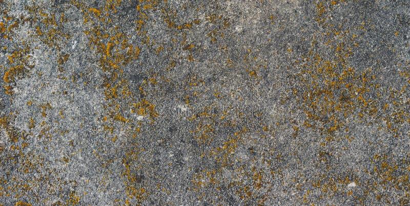 有具体纹理水平的顶视图被隔绝的黄色和灰色背景,葡萄酒黑暗的木背景,老土气石板 免版税库存图片