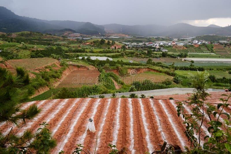 有农场、农业领域和温室的小越南村庄 库存图片