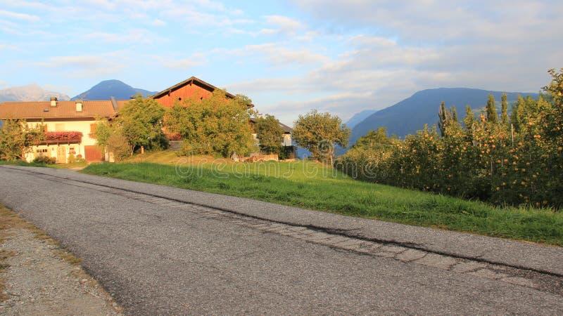 有农舍和街道的苹果计算机种植园 库存照片