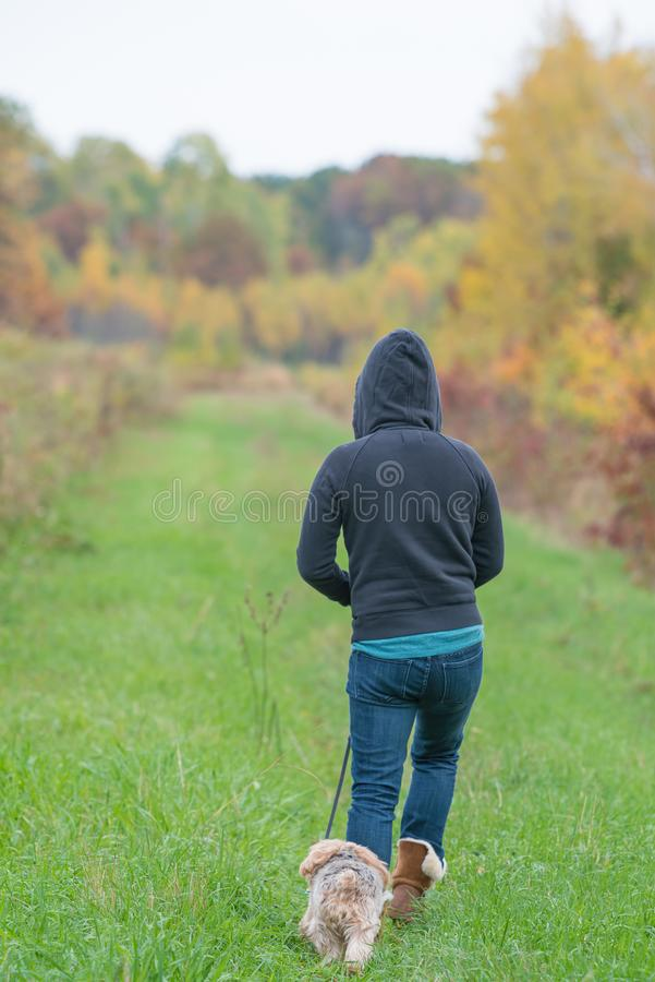 有冠乌鸦的妇女走在有约克夏狗狗的草道路的在一酥脆秋天天在自然区域在威斯康辛 库存照片