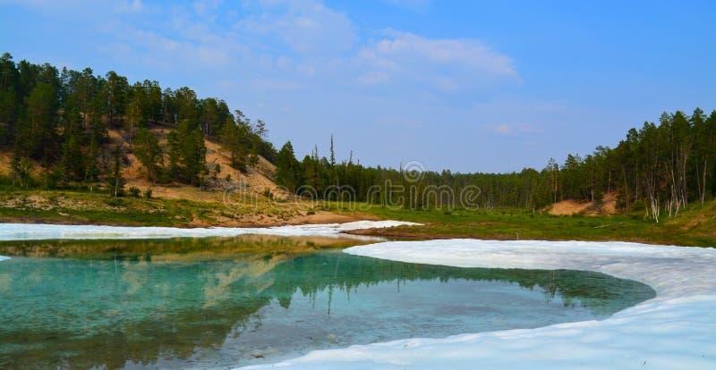 有冰和绿色森林的湖 免版税库存图片