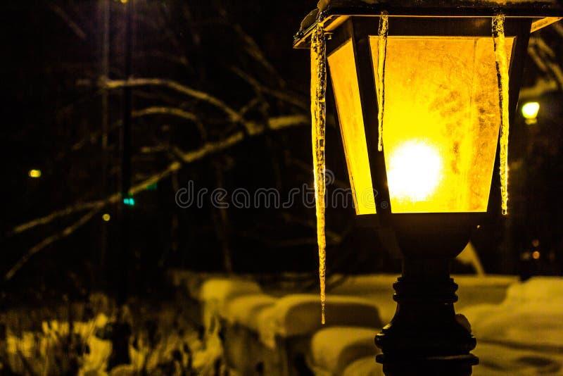 有冰柱的夜灯笼在冬天在晚上在公园 免版税库存图片