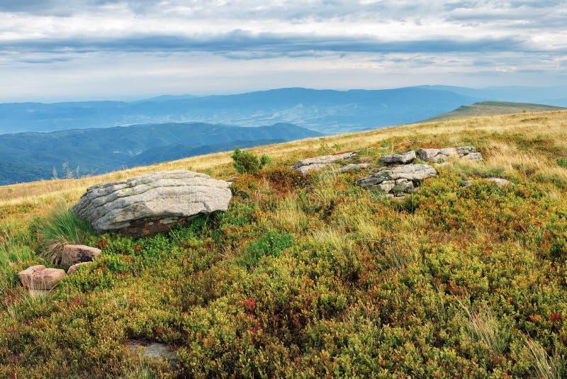有冰砾的象草的草甸在小山顶部 免版税库存照片