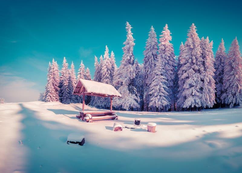 有凹室的休息处在晴朗的多雪的山森林里 免版税库存图片