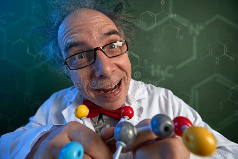 有分子结构模型的古怪的科学家 免版税库存图片