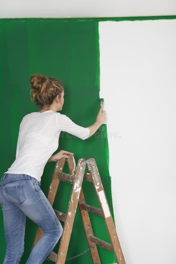 有刷子的妇女在梯子 库存照片
