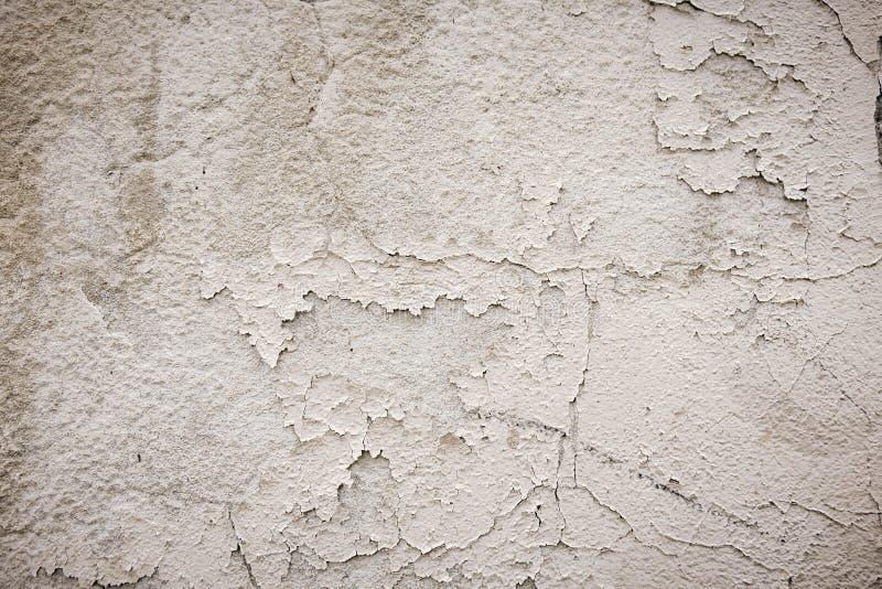 有刷子的踪影的灰色水泥墙壁在粉碎的膏药的 质地构成 库存图片