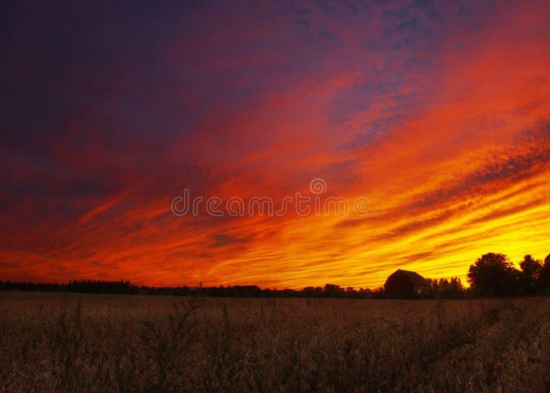 有剧烈的日落和麦地的谷仓 图库摄影