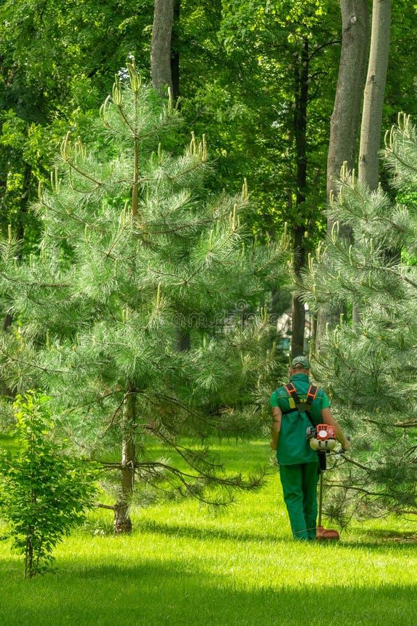 有割草机的工作者在公园割草坪 免版税库存图片