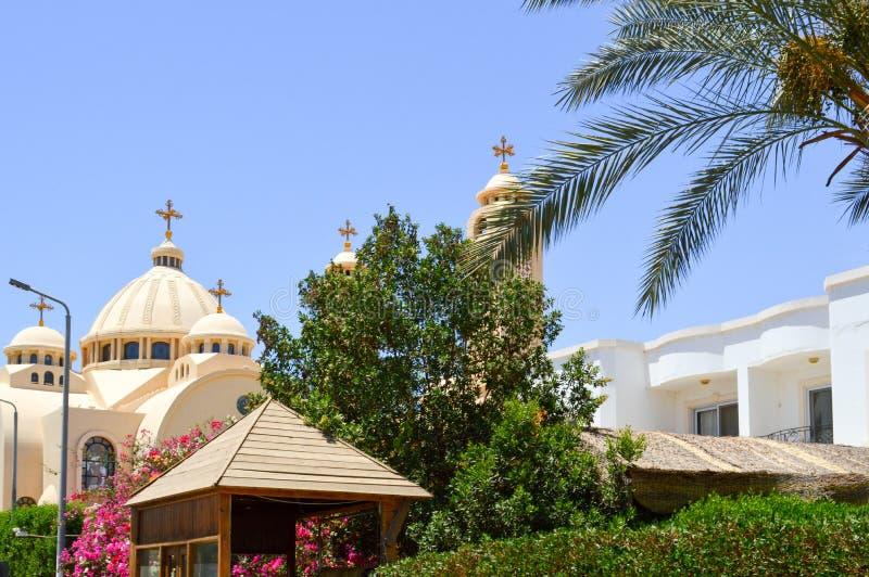 有十字架、曲拱、圆顶和祷告窗口的大埃及正统白色教会反对绿色树和棕榈t背景  免版税库存图片