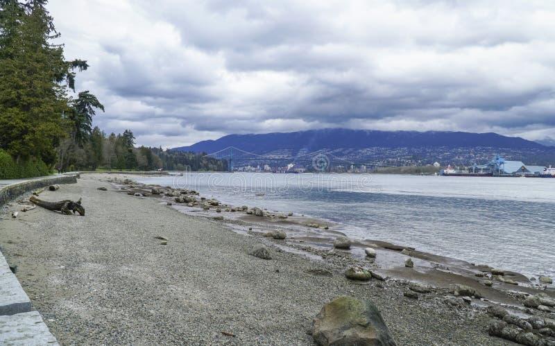 有卵石花纹的海滩史丹利公园在温哥华-温哥华-加拿大- 2017年4月12日 库存照片