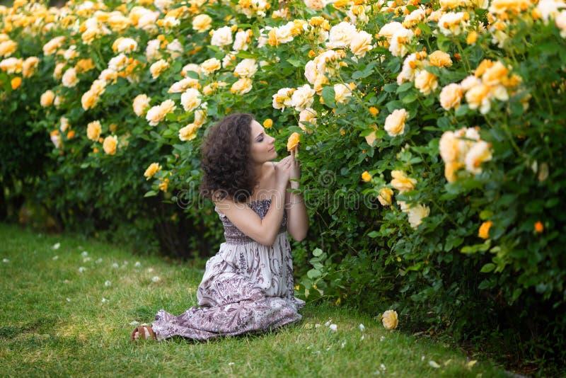 有卷发的年轻深色的白种人妇女坐绿草在黄色玫瑰丛在庭院里,嗅到的玫瑰附近,看 库存图片