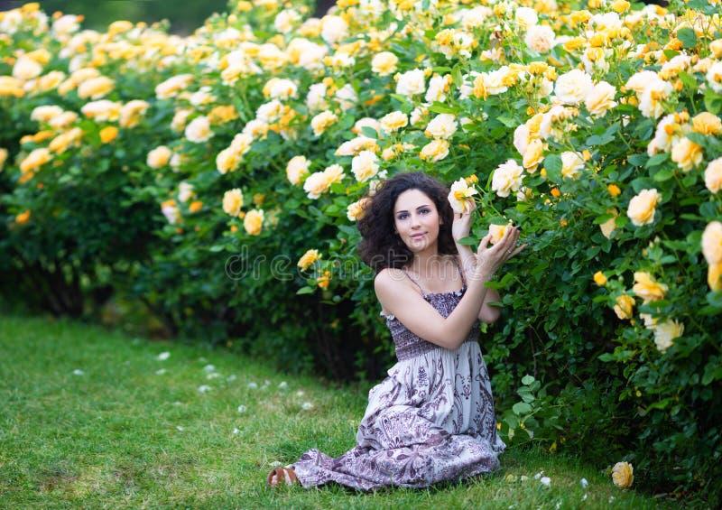 有卷发的年轻深色的白种人妇女坐绿草在黄色玫瑰丛附近在庭院里,看直接对 库存照片