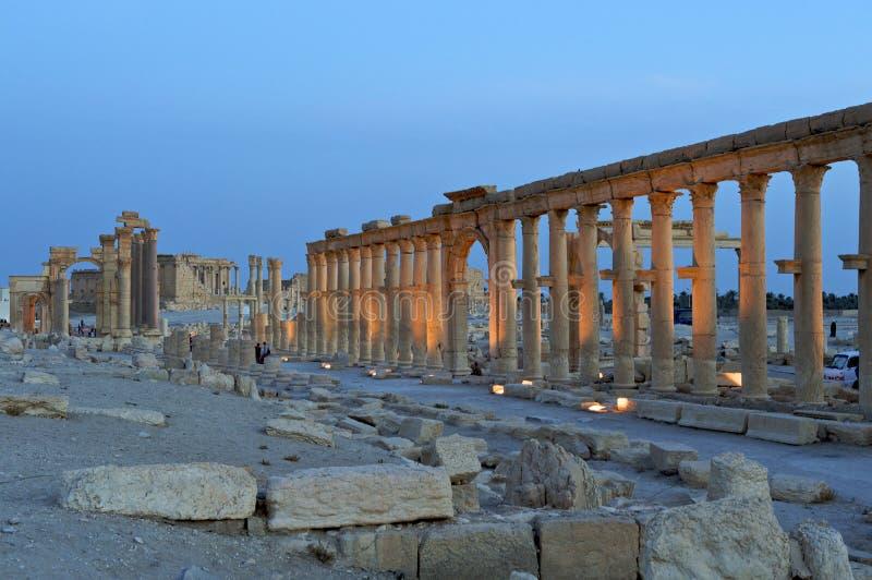 有历史的扇叶树头榈废墟叙利亚 图库摄影