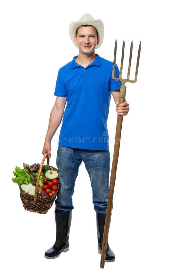 有叉子的农夫收集了新鲜蔬菜 图库摄影