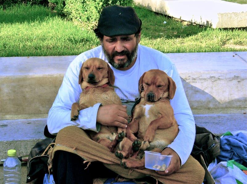 有双小狗的叫化子 免版税库存图片