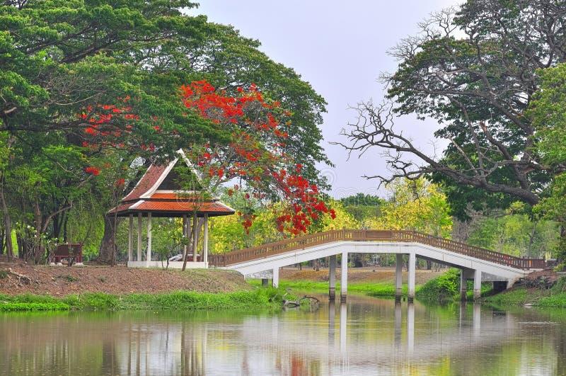 有可爱的桥梁和红色花的美丽的中国庭院 免版税库存照片